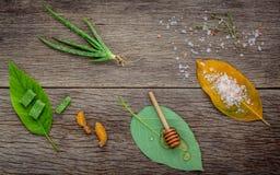 La cura di pelle e casalingo alternativi sfrega con naturale ingredien Immagini Stock Libere da Diritti