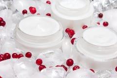 La cura di pelle di effetto di raffreddamento screma con i cubetti di ghiaccio e le bacche rosse Immagini Stock