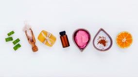 La cura e l'ente di pelle casalinghi sfrega con l'aloe naturale degli ingredienti Immagine Stock