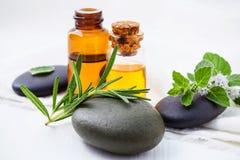 La cura e l'ente di pelle casalinghi sfrega con l'aloe naturale degli ingredienti Fotografie Stock Libere da Diritti