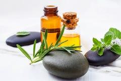 La cura e l'ente di pelle casalinghi sfrega con l'aloe naturale degli ingredienti Immagine Stock Libera da Diritti