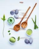 La cura e l'ente di pelle casalinghi sfrega con l'ingrediente naturale verde Immagine Stock Libera da Diritti
