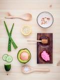 La cura e l'ente di pelle casalinghi sfregano con il avoca naturale degli ingredienti Fotografie Stock Libere da Diritti