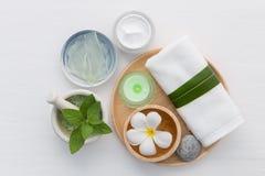La cura e l'ente di pelle casalinghi sfregano con il sale naturale degli ingredienti, Immagini Stock