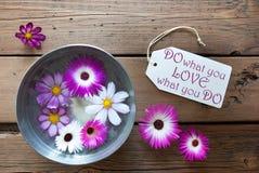 La cuvette argentée avec des fleurs de Cosmea avec la citation de la vie font ce que vous aimez ce que vous faites Photos libres de droits
