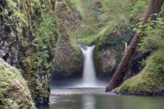 La cuvette de poinçon tombe chez Eagle Creek Closeup Photographie stock libre de droits
