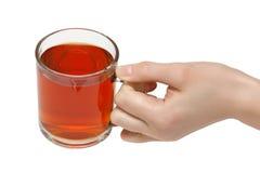 La cuvette de thé. Photo libre de droits