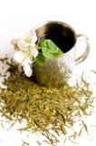 La cuvette de thé avec la fleur et de thé pousse des feuilles Photos stock