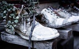 La décoration de chaussure Images stock