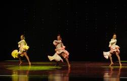 La dame de la danse du monde de l'Autriche Camélia-espagnole de flamenco-le Image libre de droits