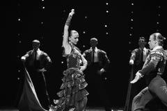 La dame de la danse du monde de l'Autriche Camélia-espagnole de flamenco-le Image stock