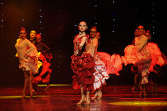 La dame de la danse du monde de l'Autriche Camélia-espagnole de flamenco-le Images stock
