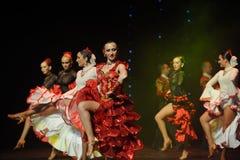 La dame de la danse du monde de l'Autriche Camélia-espagnole de flamenco-le Photos libres de droits