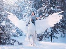 La dame triste douce mignonne à cheval avec les ailes légères molles magnifiques, Pegasus blanc dans une forêt neigeuse d'hiver p photographie stock libre de droits