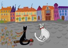 La datte des chats dans la ville Photo libre de droits