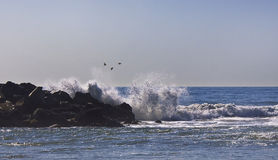 LA de la playa de Venecia, CA Imagen de archivo libre de regalías
