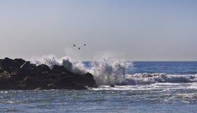 LA de plage de Venise, CA Image libre de droits
