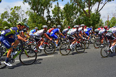 La de recyclage Vuelta España de Peleton photos stock