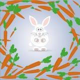 La decisione del coniglio Fotografia Stock