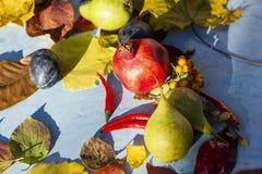 La decoración colorida del otoño consiste en las frutas, las verduras y las hojas fotografía de archivo