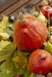 La decoración colorida del otoño consiste en las frutas, las verduras y las hojas foto de archivo