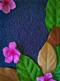 La decoración de las flores púrpuras y blancas con las hojas verdes y marrones Fotografía de archivo libre de regalías