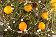 La decoración festiva de la Navidad del abeto ramifica, guirnalda Fotografía de archivo libre de regalías