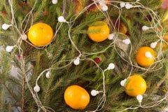 La decoración festiva de la Navidad del abeto ramifica, guirnalda, mandarinas Fotos de archivo