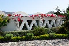 La decoración del museo del vino de Koutsoyannopoulos Foto de archivo