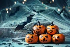 La decorazione di Halloween con le teste divertenti della zucca, il ragno, il web ed il volo battono sul fondo mistico del bokeh immagine stock libera da diritti