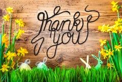 La decorazione di Pasqua, calligrafia del fiore della primavera vi ringrazia fotografia stock