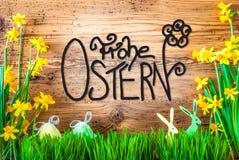 La decorazione di Pasqua, la calligrafia Frohe Ostern del fiore della primavera significa Pasqua felice fotografie stock libere da diritti