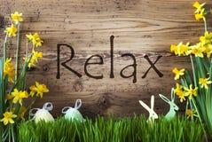 La decorazione di Pasqua, l'erba, testo si rilassa, coniglietto, uovo fotografie stock