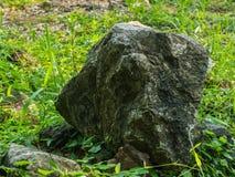 La decorazione di pietra in giardino con erba verde Fotografia Stock