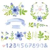 La decorazione floreale della margherita blu dell'acquerello ha messo con i numeri Immagini Stock Libere da Diritti