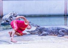 La demostración del cocodrilo Fotos de archivo libres de regalías