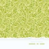 La dentelle verte part du modèle sans couture horizontal Images libres de droits