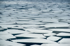 La deriva del ghiaccio fotografie stock libere da diritti