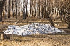 La dernière neige sur le fond du premier ressort en parc photo libre de droits