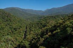 La descripción de colinas y los picos cubiertos por los bosques en el Itatiaia parquean Fotos de archivo libres de regalías