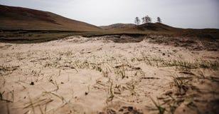 La desertificación de la tierra Imagen de archivo libre de regalías