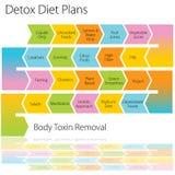La dieta del Detox planea la carta Fotos de archivo libres de regalías