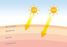La diferencia de la radiación 2 mecanografía adentro luz del sol con la piel libre illustration