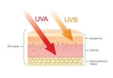 La différence du rayonnement dactylographie au soleil avec la peau illustration libre de droits