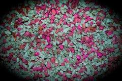 La diffusion vibrant colorée de cailloux est beau fond photos stock