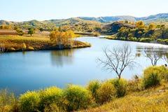 La diga del rospo di autunno fotografia stock