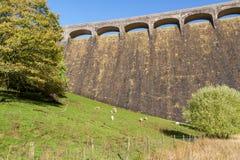 La diga di Claerwen, campo in priorità alta Fotografia Stock Libera da Diritti