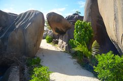 La Digue island. A path to the most beautiful beach of La Digue island : the silver source beach Royalty Free Stock Images