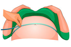 La dimensión del abdomen de una mujer embarazada Imagenes de archivo