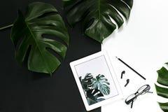 La disposición del espacio de trabajo de la oficina con los accesorios de la tableta en el fondo blanco, monstera tropical se va fotos de archivo